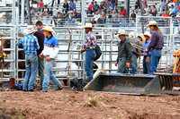 2017.08.02 Rodeo, Rice Bull Riding Co.