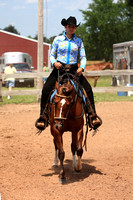 Horses & Horse Shows